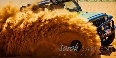 Somewhere behind the sand is a Sandwolff