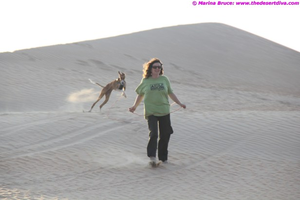 Did I say I love the desert?