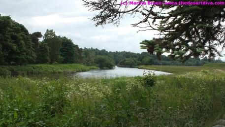 River Dee near Drumoak
