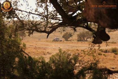 camping at jebel akhdar
