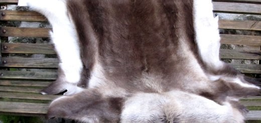 reindeer skins