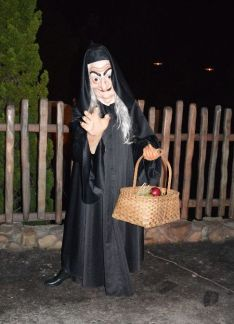 The Hag from Snow White