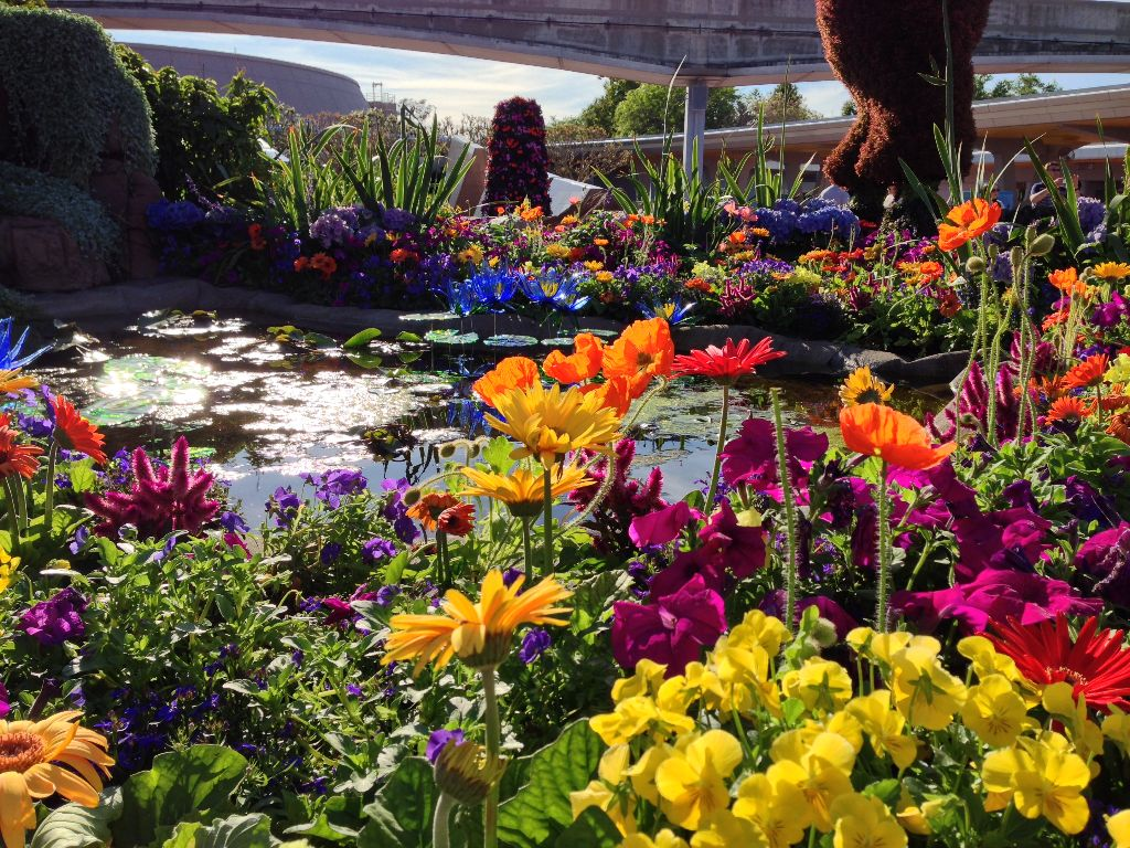23rd Epcot International Flower Garden Festival Expands to 90