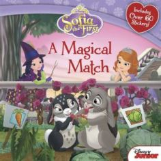 sofia the first: a magical match