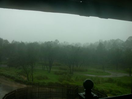 this isn't the typical view at this spot at Animal Kingdom Lodge