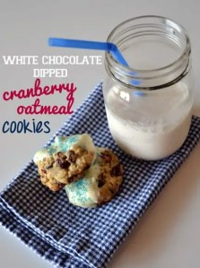 Red, White, Blue Cookies-007