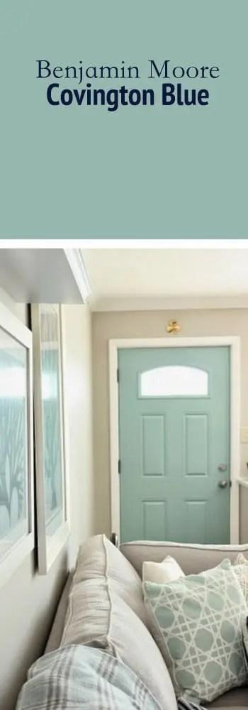 Paint Color Door