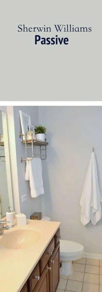 paint color bathroom