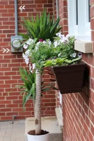 meter flower box before