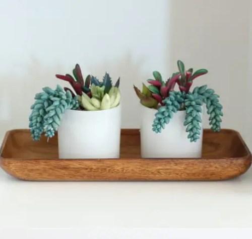 SucculentMaggie Built in Shelves