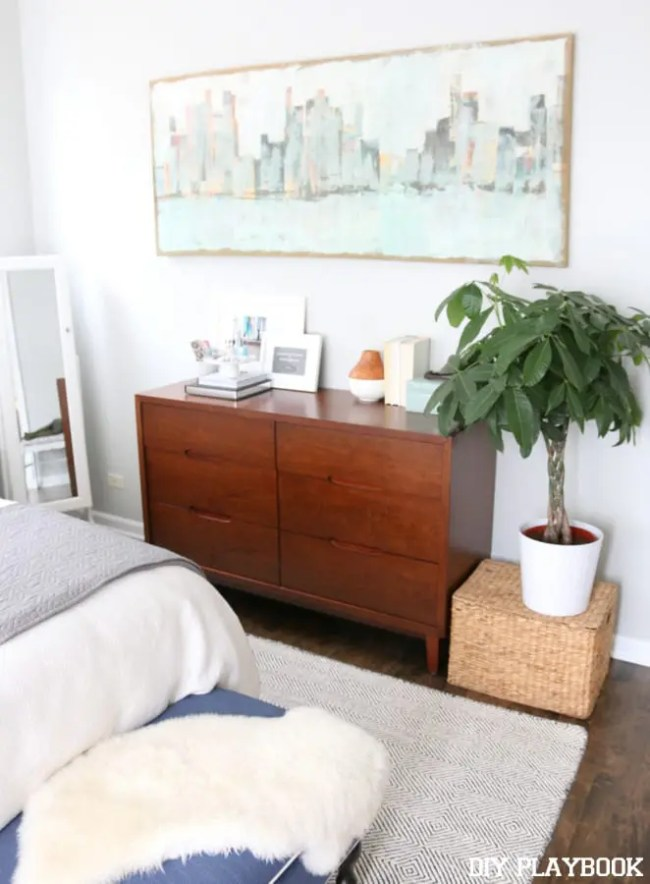 2-casey-master-bedroom-indoor-plant-money-tree