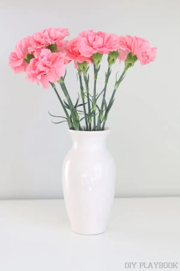6-carnations-flowers-in-vase