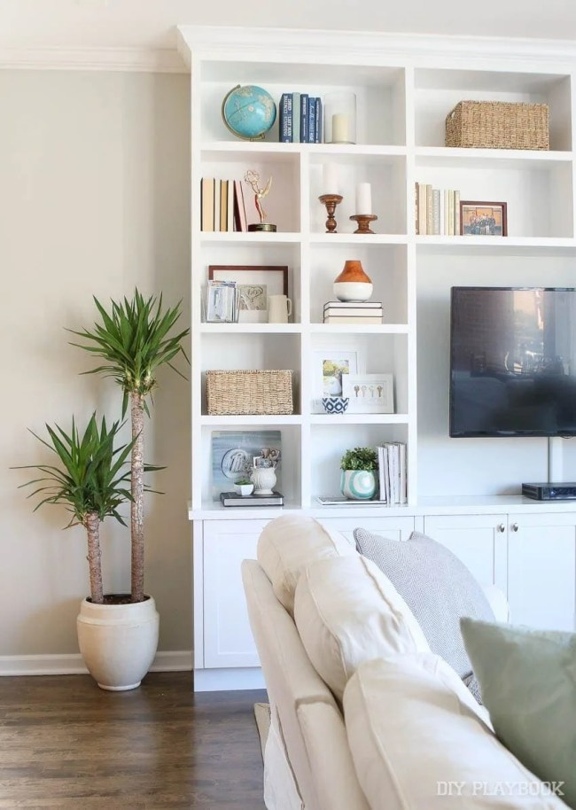 family-room-plant-built-ins