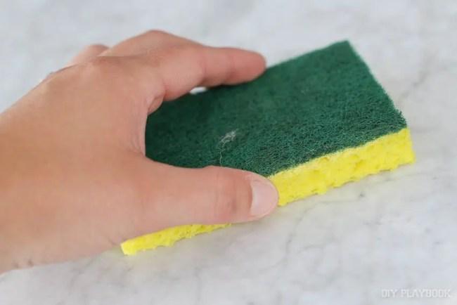 marble-table-seal-sponge