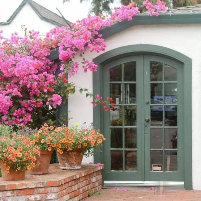 travel-carmel-door-flowers