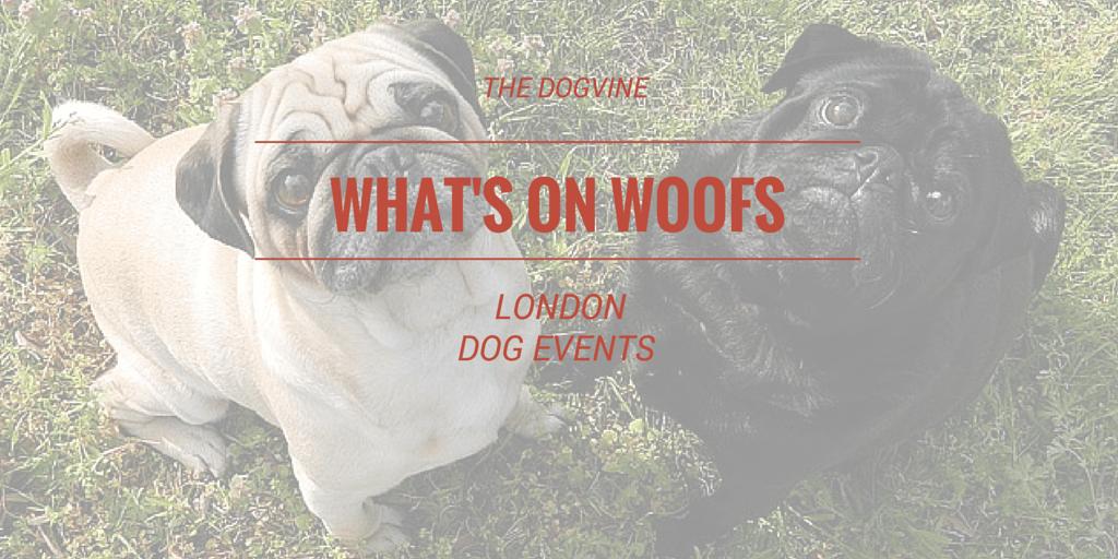 London Dog Events