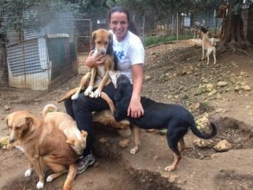 FB Animal Rescue Kefalonia Volunteering