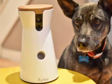FB Furbo Dog Camera