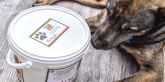 FB Winston & Porter Dog Supplements (1)
