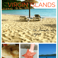 Visiting a Caribbean Getaway: Fun Things to Do in St. Thomas, Virgin Islands