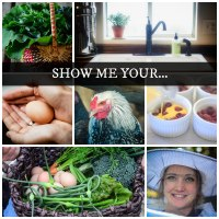 Photo Submission Contest: Show Me Your...