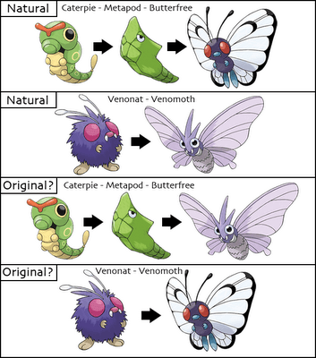 Venonat - Butterfree Pokemon Theory
