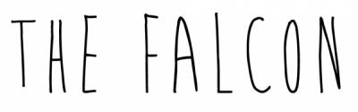 falcon logo3