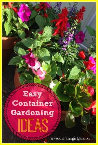 Five easy care garden flowers for Easy care garden ideas