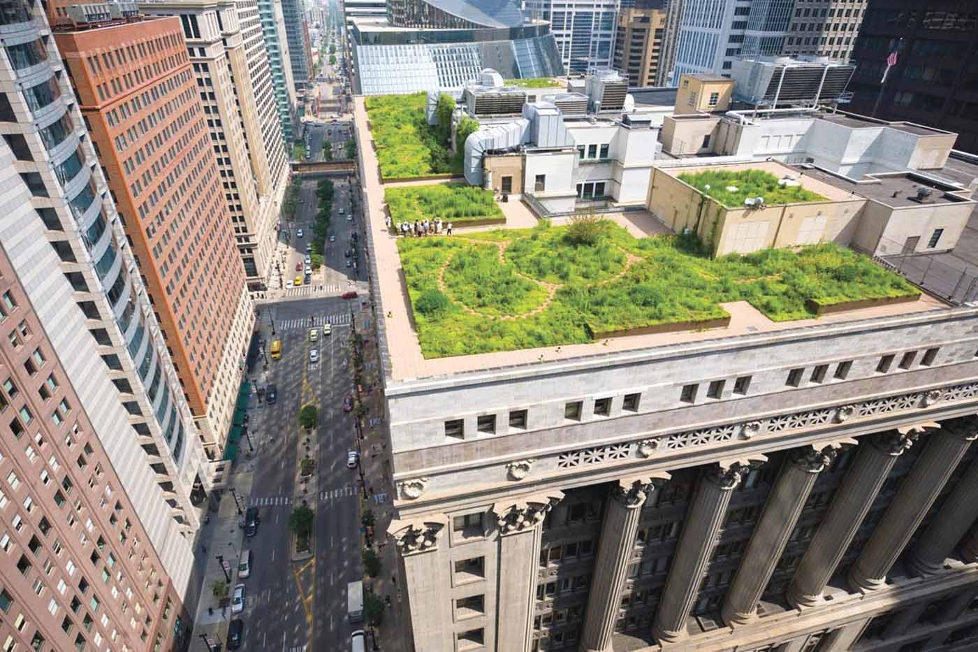 As Part Of Initiative To Combat The Urban Heat Island Effect And To Improve  Urban Air Quality, The Semi Extensive Green Roof Was Completed At The End  Of ...