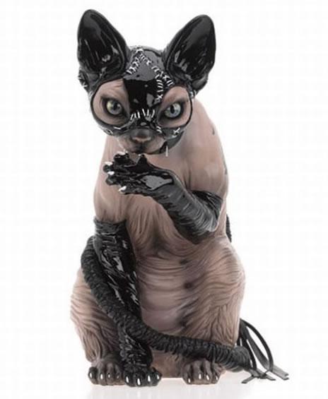 sexy-cat-sphynx-sphinx