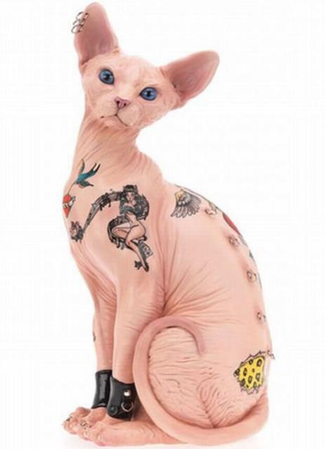 tattoo-cat-sphinx-sphynx