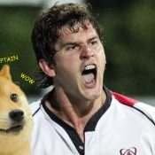 Doge gives Captain Robbie the seal of approval. Much feels!