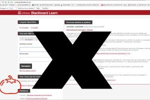 web_opinions_tom_blackboard_cred_jaclyn_mcrae-sadik
