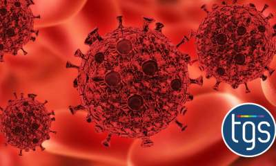 new research sheds light on the interaction between hiv and the immune system - the gay say