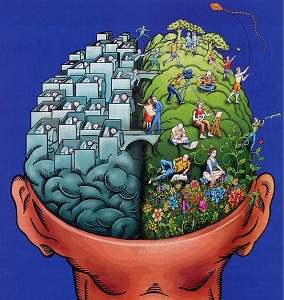 Brain by TZA - THUNK - Josh Pelton - YouTube, philosophy, education