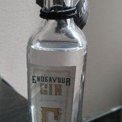 endeavor-gin-sample-bottle