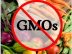 A list of GMO Free Food Companies