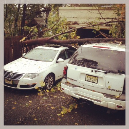 2 of Green Diva Meg's family's cars trashed by Sandy