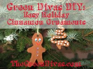 DIY Cinnamon ornament graphic