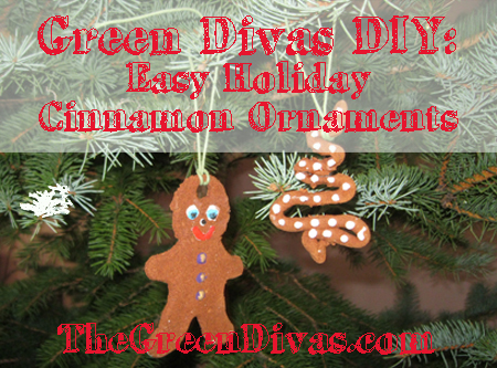 DIY Cinnamon ornament graphic