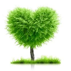 earth holidays green holidays