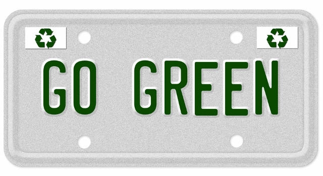 green driving license plate