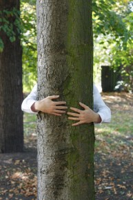 treehugger tree hugger nature