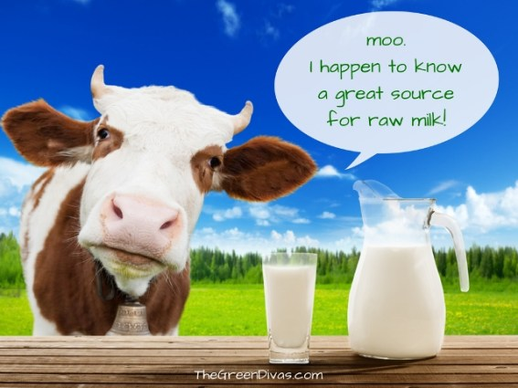 is raw milk healthy?