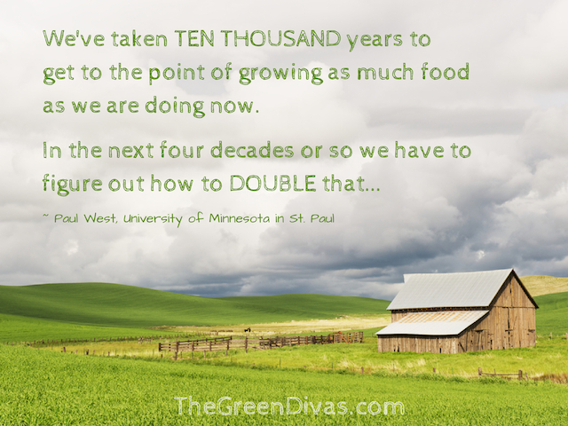 quote about myearth360 food security & environment