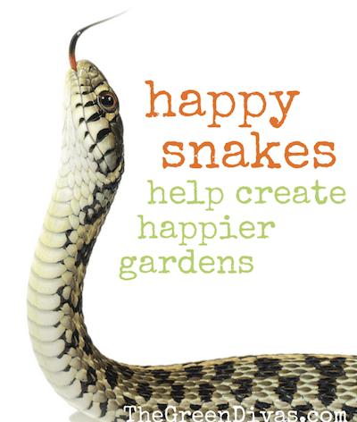 happy snakes, happy gardens