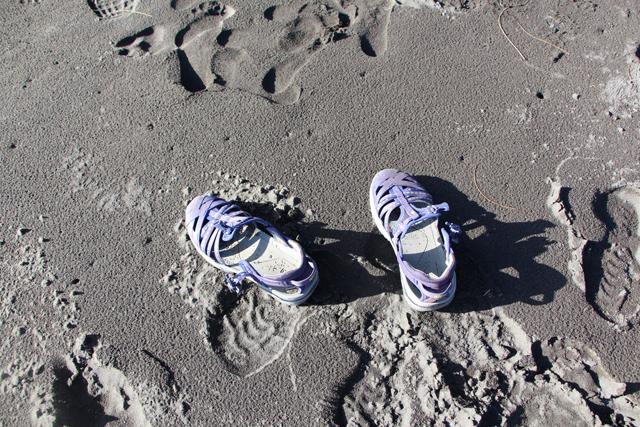 Green Divas Ahnu Shoes on Black Sand Beach Kohala Hawaii