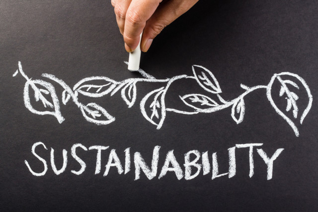 why sustainability sucks