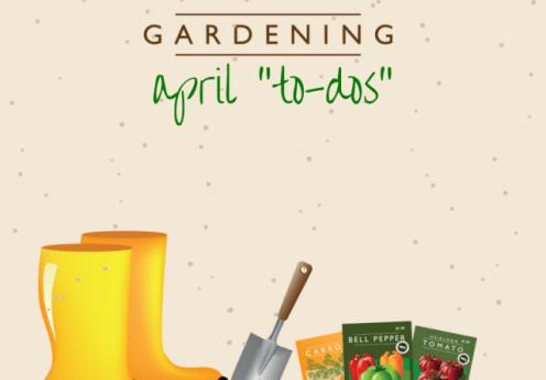 april gardening to dos