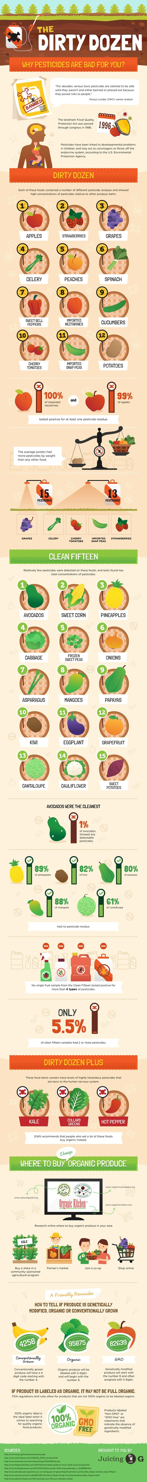 Dirty Dozen Infographic